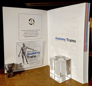 Anatomy Trains -- Myofascial Meridians for Manual and Movement Therapists