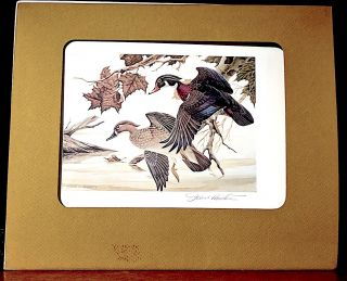 "1982 Ohio ""First of State"" Duck Stamp Print. John A. Ruthven, Artist."